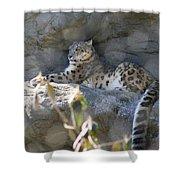 Snow Leopard    No.2 Shower Curtain