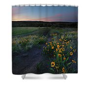 Snow Mountain Trail Shower Curtain