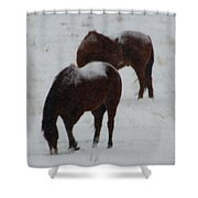 Snow On Horses Shower Curtain