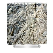 Snow On Ice Shower Curtain