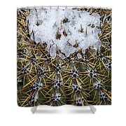 Snow On Top Of Small Saguaro Cactus Shower Curtain