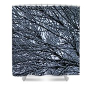 Snow On Twigs Shower Curtain