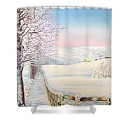 Snow Path Shower Curtain