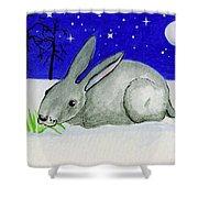 Snow Rabbit Shower Curtain