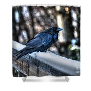 Snow Raven Shower Curtain