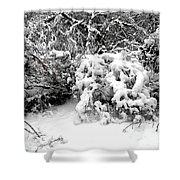 Snow Scene 1 Shower Curtain by Patrick J Murphy