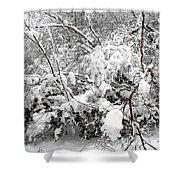 Snow Scene 4 Shower Curtain