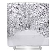 Snow Scene Tree Branches Shower Curtain