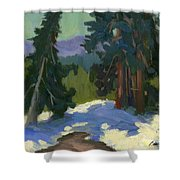 Snow Shadows Mammoth Mountain Shower Curtain