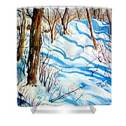 Snow Shadows Shower Curtain