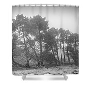 Snow Storm At The Mountains Shower Curtain