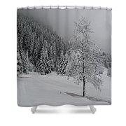 Snow Tree Shower Curtain