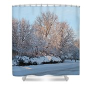 Snow Trees Sunrise 2-2-15 Shower Curtain