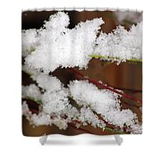 Snow Twig Abstract Shower Curtain