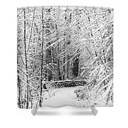 Snow Wall Shower Curtain