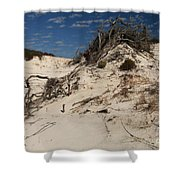 Snow White Dunes Shower Curtain by Adam Jewell