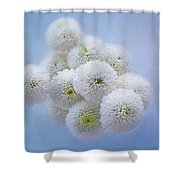 Snowballs-pom Mum Shower Curtain
