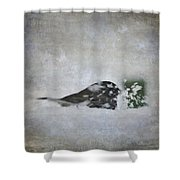 Snowbird Shower Curtain