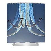 Snowbirds In A Dive Shower Curtain