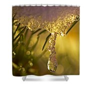 Snowdrop Crystal Shower Curtain by Sharon Talson