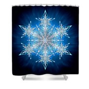 Snowflake - 2012 - A Shower Curtain by Richard Barnes