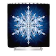 Snowflake - 2013 - A Shower Curtain by Richard Barnes