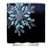 Snowflake In Window 20471 Shower Curtain
