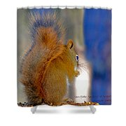 Snowflake Squirrel At Sunset Shower Curtain