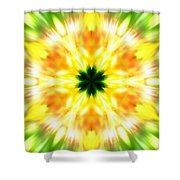 Snowflake Sunburst Shower Curtain