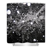 Snowflakes Falling Shower Curtain