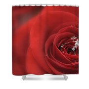 Snowflakes On A Rose Shower Curtain