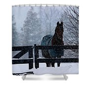 Snowstorm Horse Shower Curtain