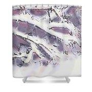 Snowtract Shower Curtain