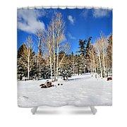 Snowy Aspen Grove Shower Curtain
