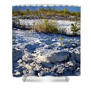 Snowy Beach Shower Curtain