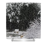 Snowy Bench Shower Curtain
