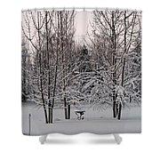 Snowy Bird Bath Shower Curtain