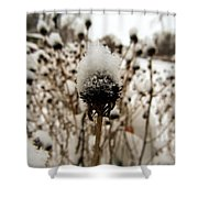 Snowy Cap Shower Curtain