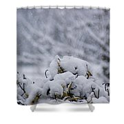 Snowy Shower Curtain