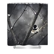 Snowy Chickadee Shower Curtain by Shane Holsclaw