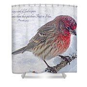 Snowy Day Housefinch With Verse  Shower Curtain