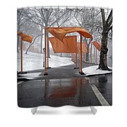 Snowy Day In Central Park Shower Curtain