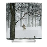 Snowy Deer Shower Curtain