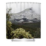 Snowy Desert Mountain 1 Shower Curtain