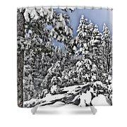 Snowy Dreams  Shower Curtain