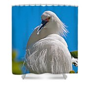 Snowy Egret Shower Curtain