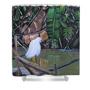 Snowy Egret In Costa Rica Shower Curtain