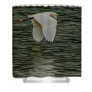 Snowy Egret On Estuary Shower Curtain