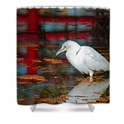 Snowy Egret Stalking His Lunch Shower Curtain