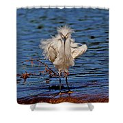 Snowy Egret With Yellow Feet Shower Curtain
